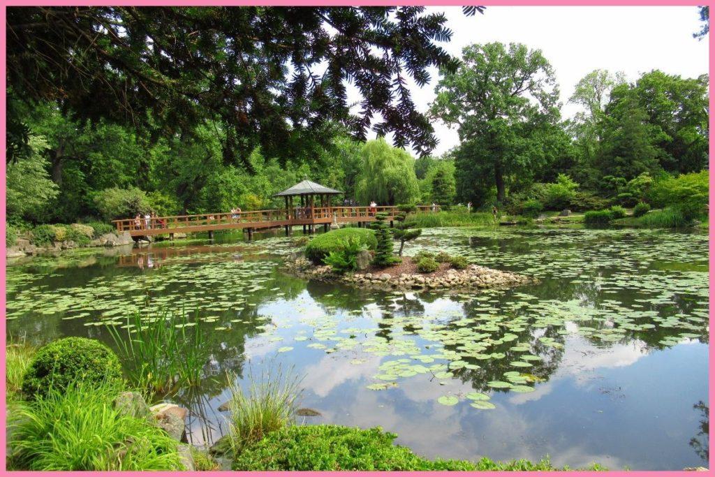 ogród japoński we Wrocławiu - co warto zobaczyć we Wrocławiu