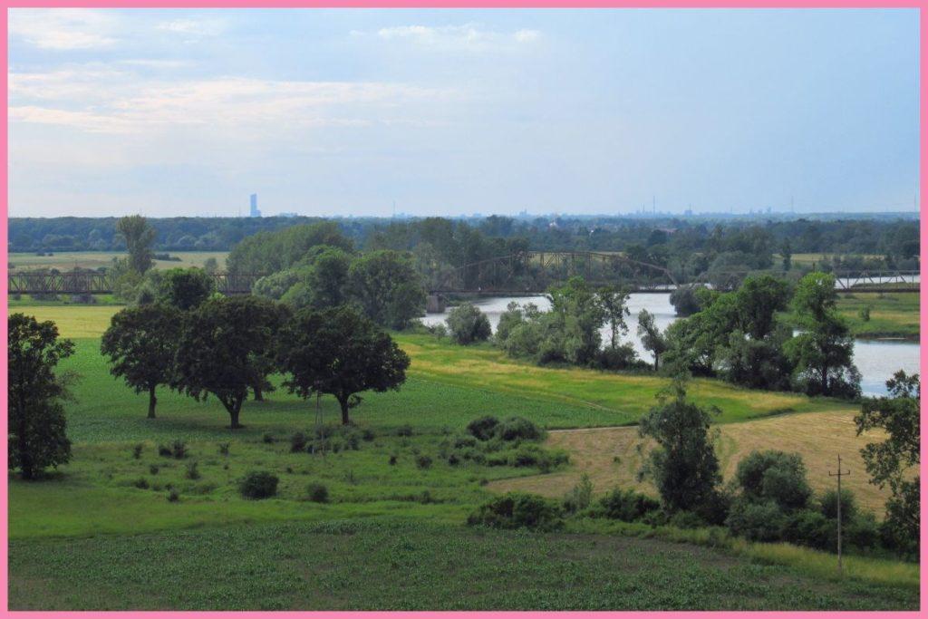 widok z wieży widokowej Kotowice gmina Siechnice